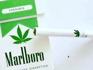 Marlboro invests $1.8 billion into cannibas company cronos