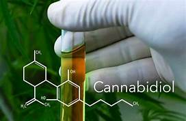 Cannibidiol CBD Overview